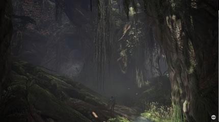 巨木とぶら下がるツタの画像