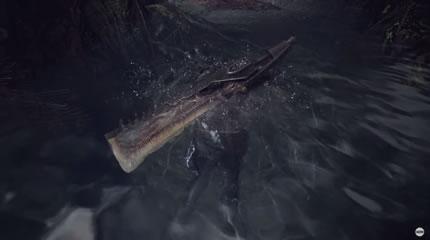 水中から出てきたハンターの画像
