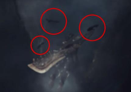 水中で確認できる魚影の画像