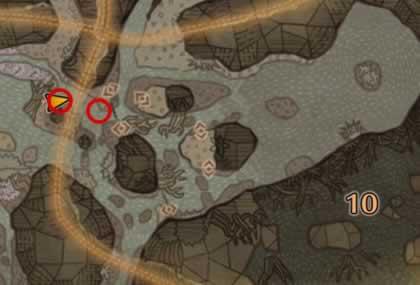 大蟻塚の荒地エリア9と10の歴戦アンジャナフの痕跡がある場所