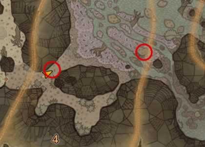大蟻塚の荒地エリア4の歴戦リオレイアの痕跡がある場所