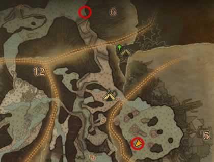 古代樹の森の歴戦トビカガチの痕跡がある場所